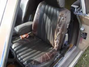 needs new upholstery
